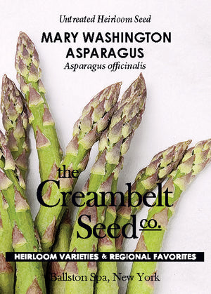 Asparagus - Mary Washington Untreated