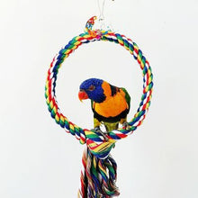 Load image into Gallery viewer, Rope Bungee Bird Toy, Cotton