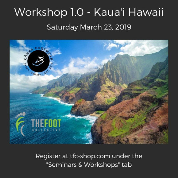 Workshop 1.0 - Kauai, Hawaii. March 23, 2019