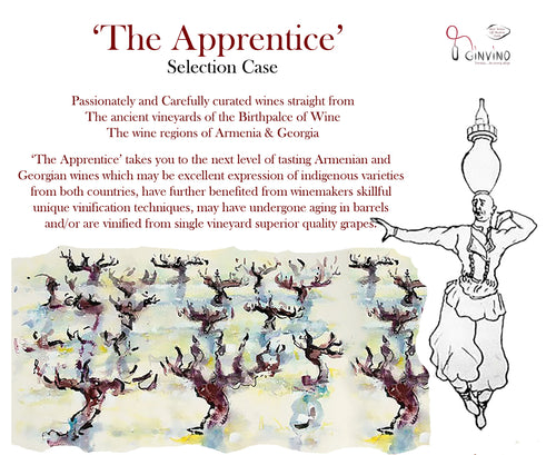 'The Apprentice' Case
