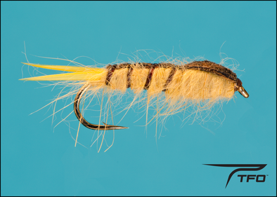 Alberta Stone fly fishing nymph, TFO - Temple Fork Outfitters Canada