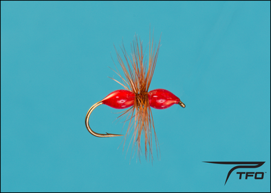 Ant Epoxy - Red Dry fly fishing fly | TFO - Temple Fork Outfitters Canada