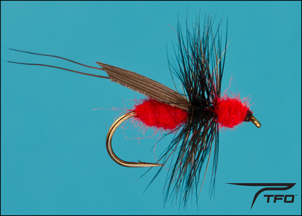 Ant Red Flying Dry fly fishing fly | TFO - Temple Fork Outfitters Canada