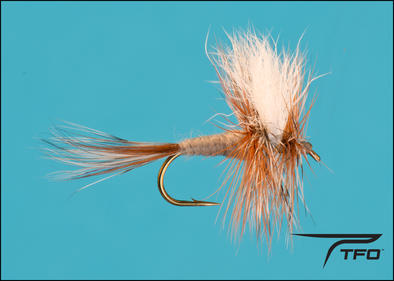 Bastard Adams Dry fly fishing fly | TFO - Temple Fork Outfitters Canada