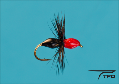 Ant Epoxy - Black/Red Dry fly fishing fly | TFO - Temple Fork Outfitters Canada