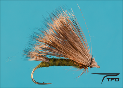 Triwing Sedge - Olive
