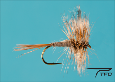 Adams Dry Fly fishing fly, TFO - Temple Fork Outfitters Canada