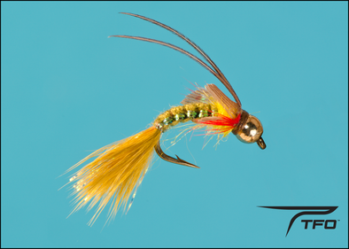 Beadhead Caddis Olive Fly fishing nymph | TFO - Temple Fork Outfitters Canada