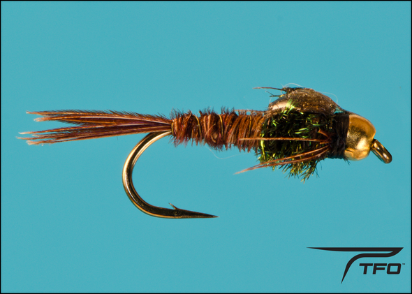 Beadhead Pheasant Tail | TFO - Temple Fork Outfitters Canada
