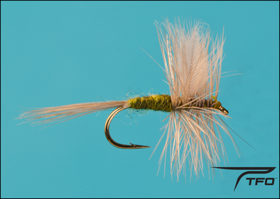 Blue Wing Olive | TFO - Temple Fork Outfitters Canada
