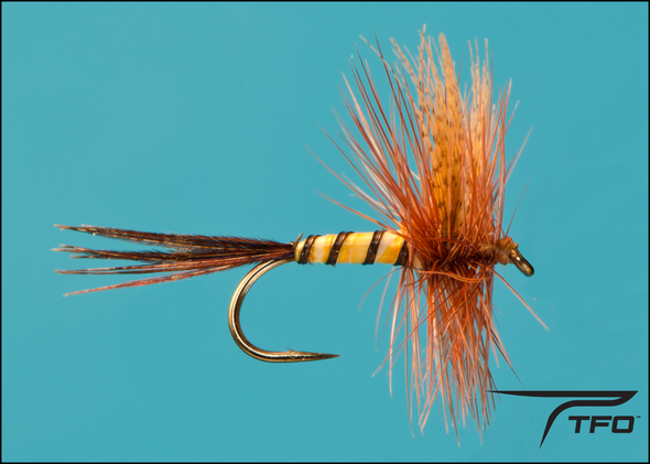 Brown Mayfly | TFO - Temple Fork Outfitters Canada