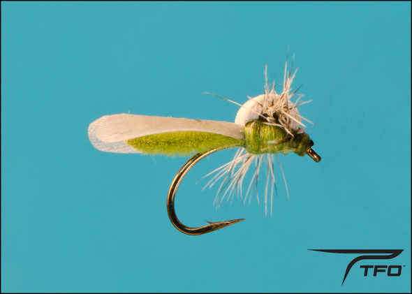 Caddis PS X(Extended Body) Olive/Gray | TFO - Temple Fork Outfitters Canada