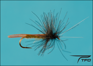 Caddis Slow Water Realistic Olive | TFO - Temple Fork Outfitters Canada