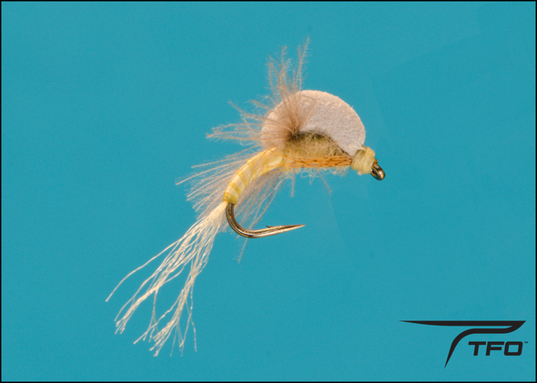 Emerger Ephemerella | TFO - Temple Fork Outfitters Canada