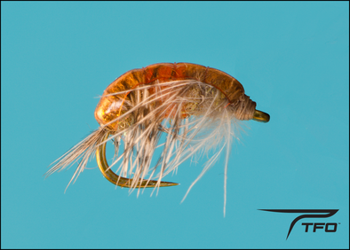 Scud Hot Spot Czech Dark Orange | TFO - Temple Fork Outfitters Canada