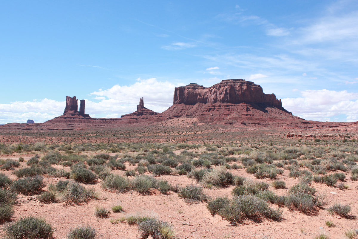 Monument Valley Online Trading Post