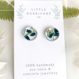 Button Studs - Australian Native Geraladton wax - Little Hurricane Co