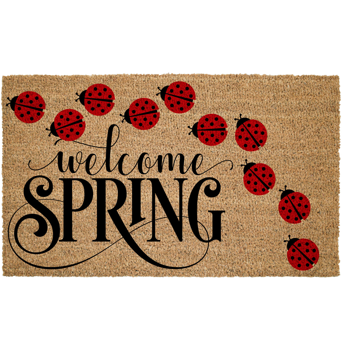Hello Spring Small Ladybugs Coir Doormat