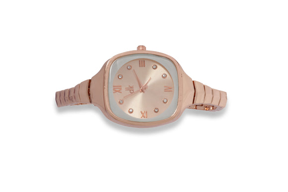 Dhanari Women's Decent Watches (WAT-3) C3
