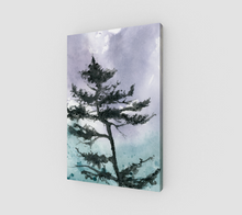 Dancing Shore Pine Canvas