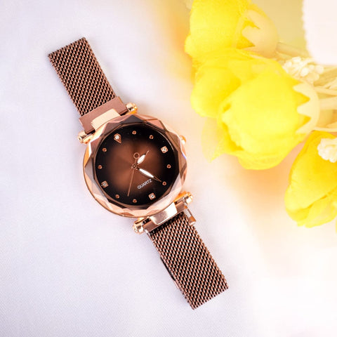Ricarda Brown Magnetic Strap Queen Watch - Ferosh