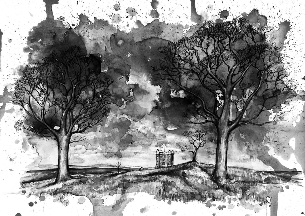 Lyme Park in Monochrome Art Print