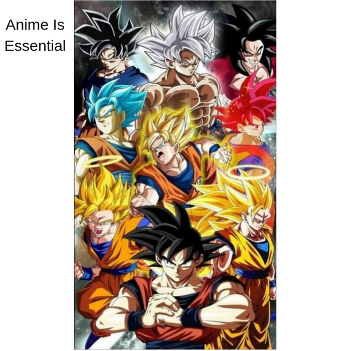 The Dragon Ball Super Goku Poster