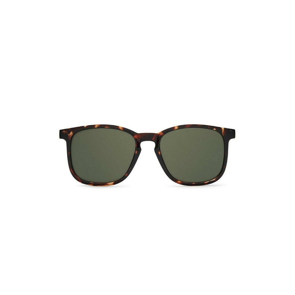 Oxford Sunglasses