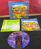 Kao The Kangaroo Sega Dreamcast Game