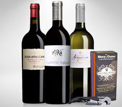 Chile premium wine set of 2 red