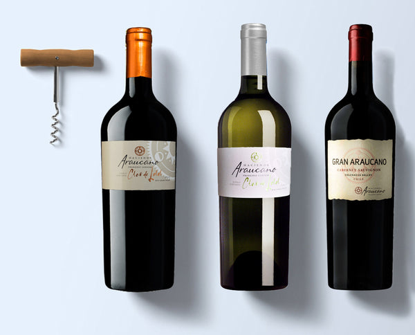 Chile premium wine set