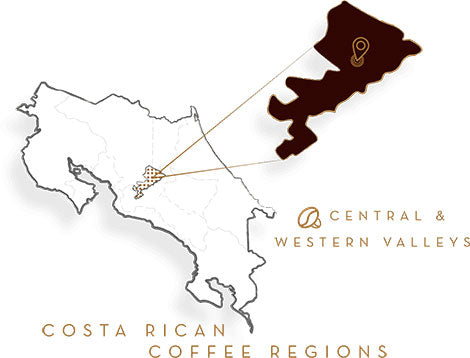 COSTA RICAN DARK ROAST COFFEE