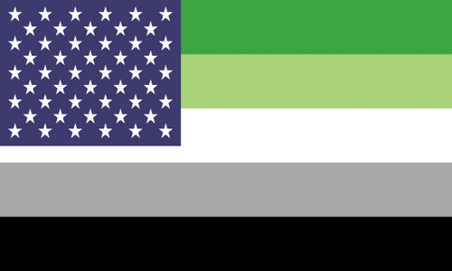 Flag Aromantic Usa