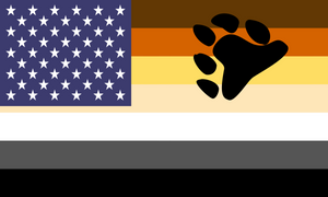 Flag Bear Pride Usa