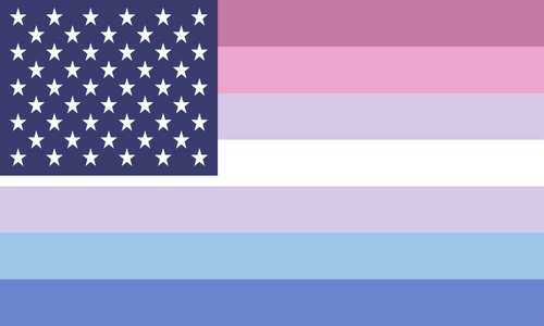 Flag Bigender Usa