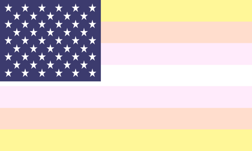 Flag Pangender Usa