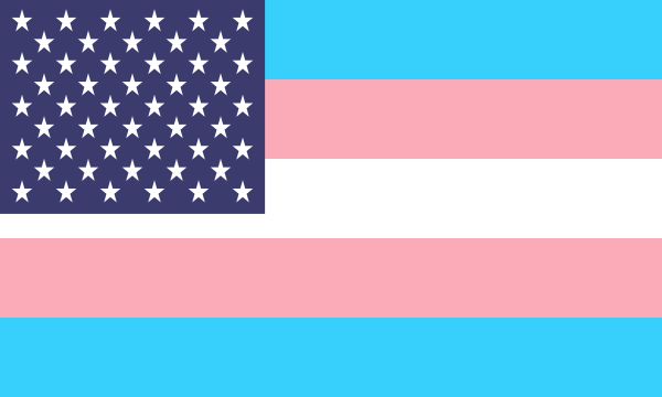 Flag Transgender Usa