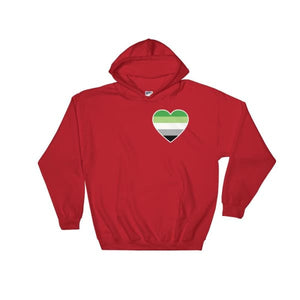 Hooded Sweatshirt - Aromantic Heart Red / S