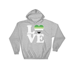 Hooded Sweatshirt - Aromantic Love & Heart Sport Grey / S