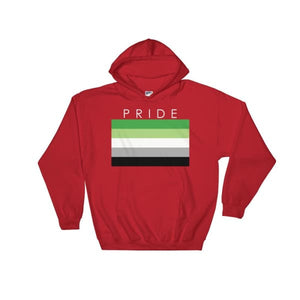 Hooded Sweatshirt - Aromantic Pride Red / S