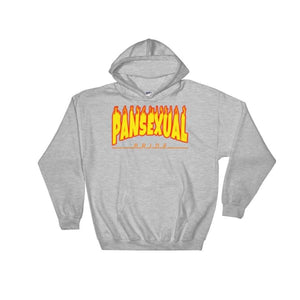 Hooded Sweatshirt - Pansexual Flames Sport Grey / S