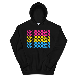 Hooded Sweatshirt - Pansexual OK BOOMER