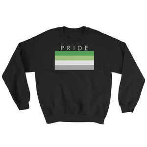 Sweatshirt - Aromantic Pride Black / S