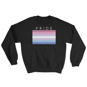 Sweatshirt - Bigender Pride Black / S