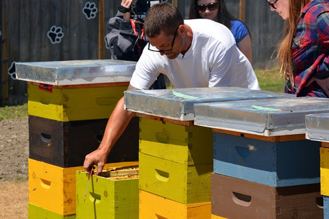 Brian working on Bee Hives