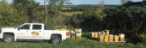 4th Line Innisfil Bee Yard and Bee truck at Innisfil Creek Honey