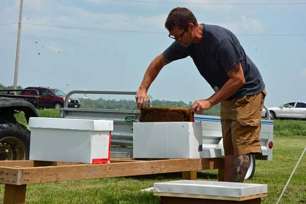 3 - Beekeeping Course - Splitting Hives and Making Nucs