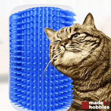 brosse-d-angle-chat