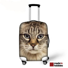 protection valise chat