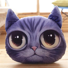 3D Cat Pillow - Barry